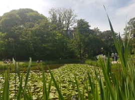 20180422_145509_Pond_Jardin Des Plantes_Montpellier_Hoopla Adventures_2018